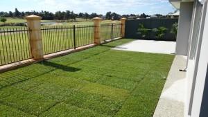 lawns1