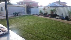 lawns3